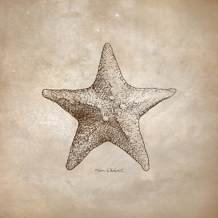 Illustrative Digital Art - Distressed Antique Nautical Starfish by Karen Whitworth