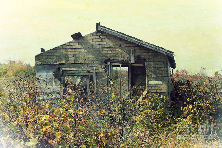 Distressed Honey House Door County Wisconsin Photograph