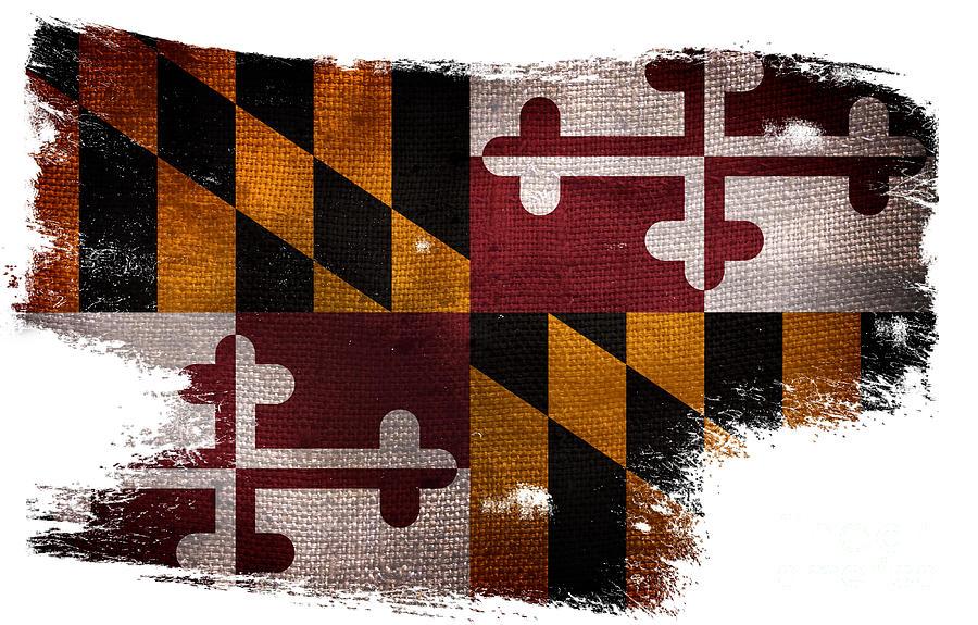 Best Distressed Maryland Flag Photograph by Jon Neidert GM56