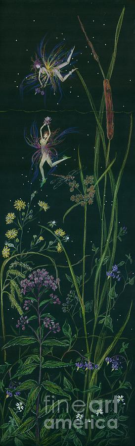 Cattails Drawing - Ditchweed Fairy Cattails by Dawn Fairies
