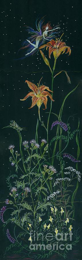 Fairy Drawing - Ditchweed Fairy Daylily by Dawn Fairies