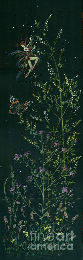 Butterfly Drawing - Ditchweed Fairy Hello Butterfly by Dawn Fairies