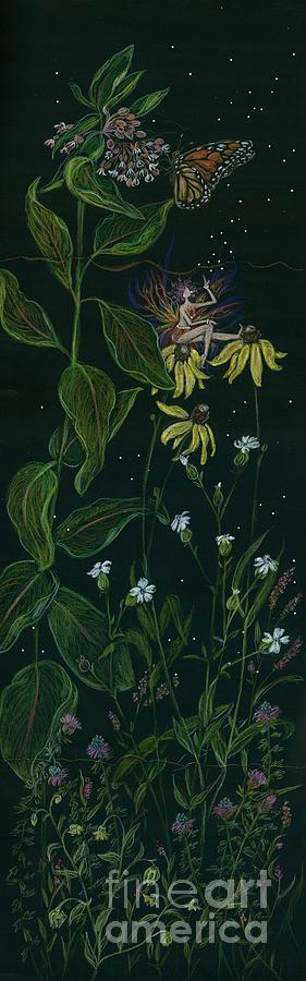 Milkweed Drawing - Ditchweed Fairy Milkweed by Dawn Fairies