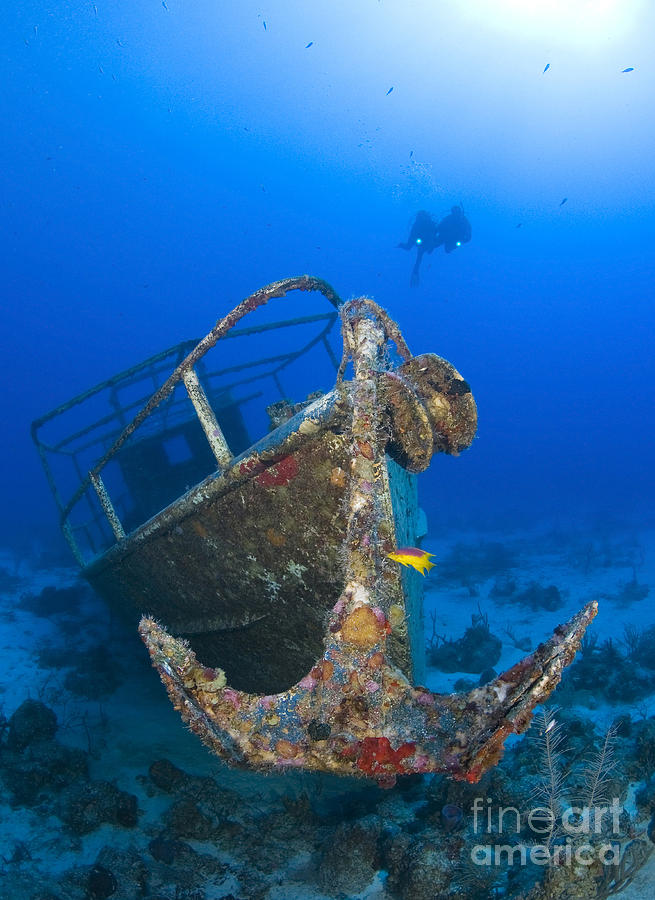 Anchor Photograph - Divers Visit The Pelicano Shipwreck by Karen Doody
