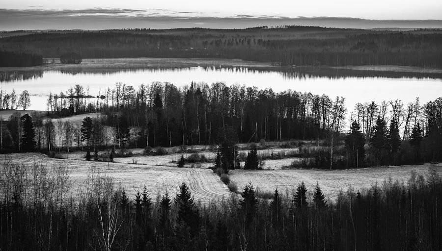 Matti Ollikainen Photograph - Divider by Matti Ollikainen