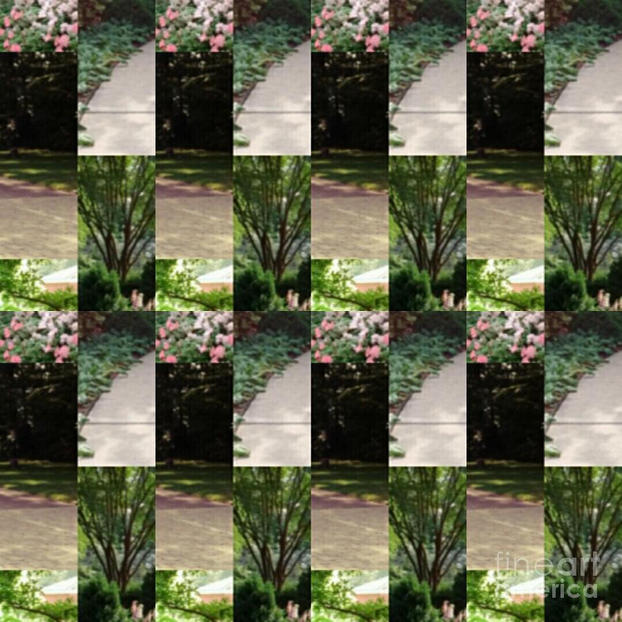Garden Photograph - Dixon Gallery Gardens  by Karen Francis