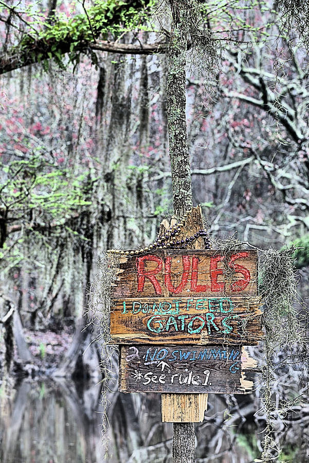 Cajun Photograph - Do Not Feed Gators by JC Findley