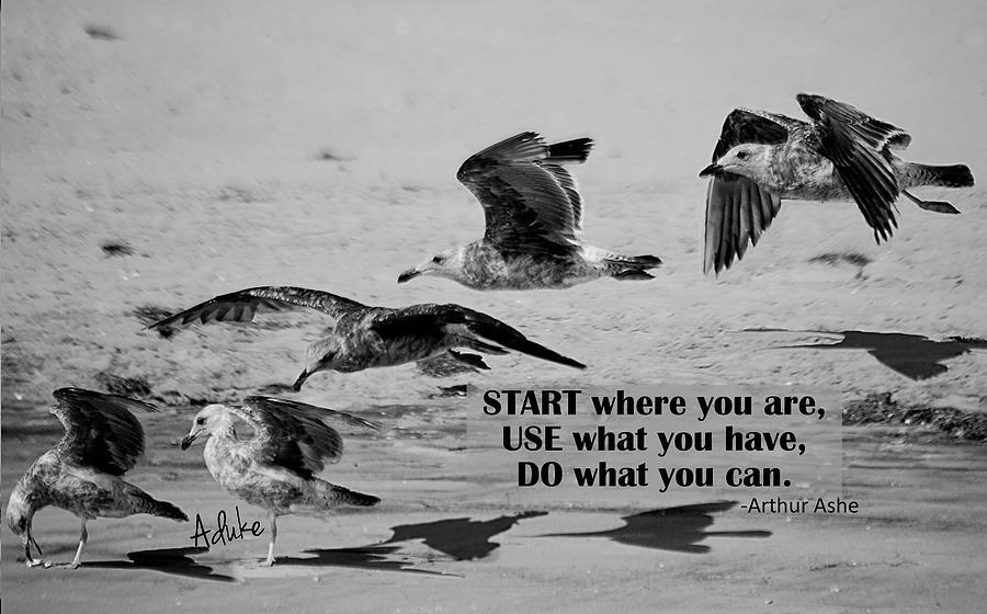 Bird Photograph - Do what you can by Maria Aduke Alabi