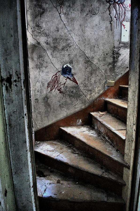 Old House Photograph - Do You Dare by Emily Stauring