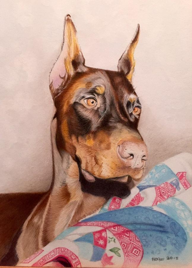 Canine Drawing - Rudy by David Hoque