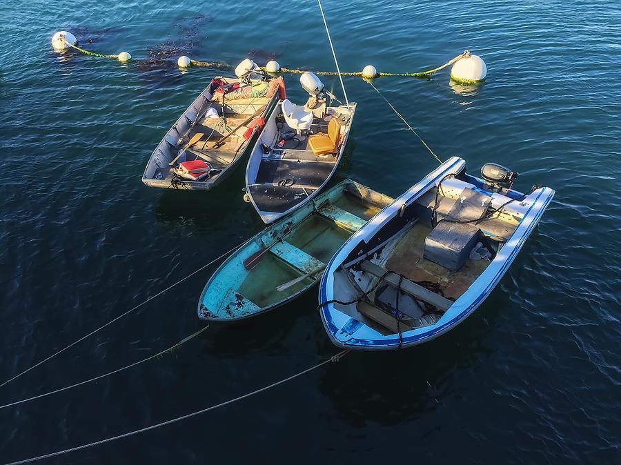 Boat Photograph - Docked by Jonathan Nguyen