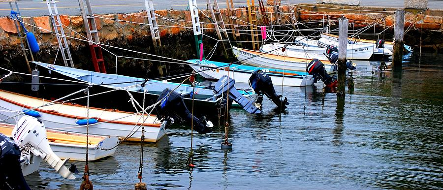 Cape Cod Photograph - Docked by Sarah Jean Sylvester