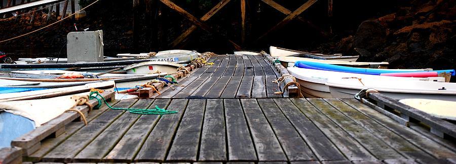 Dock Photograph - Docked Up by Sarah Jean Sylvester