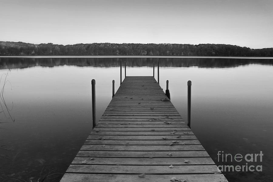 Dock It by Michael Greiner