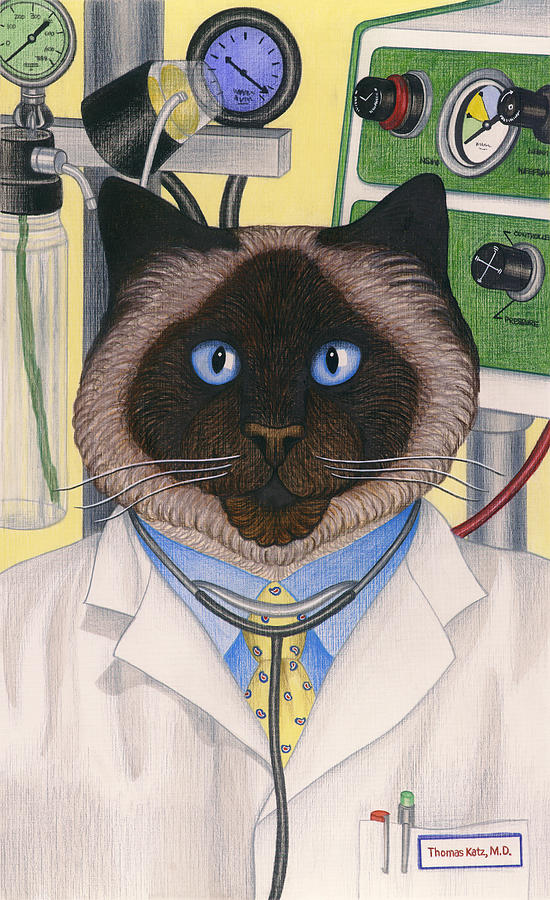 Siamese Cat Painting - Doctor Cat by Carol Wilson