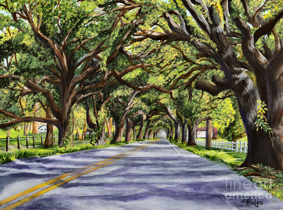 Painting Painting - Docville Oaks by Elaine Hodges
