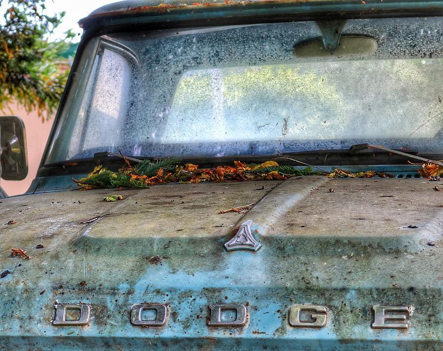 Las Tunitas Dodge by Gia Marie Houck