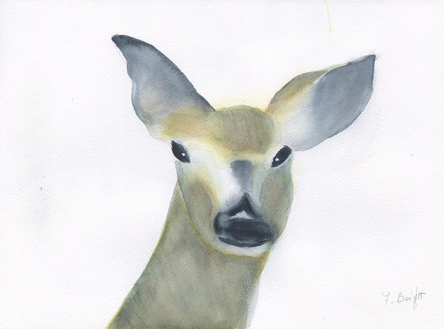 Doe Painting - Doe  by Frank Bright