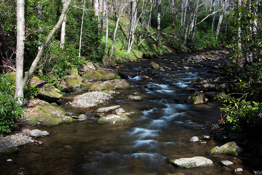 Water Photograph - Doe River In April by Jeff Severson