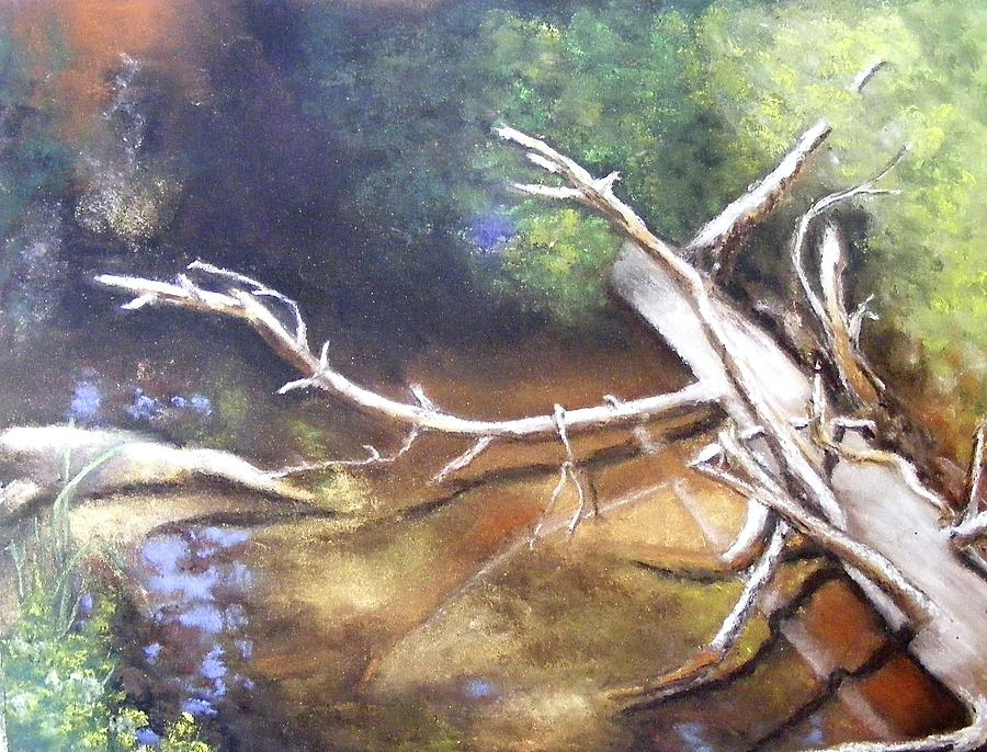 California Landscape Painting - Does It Make A Sound by Darlene Jaeger