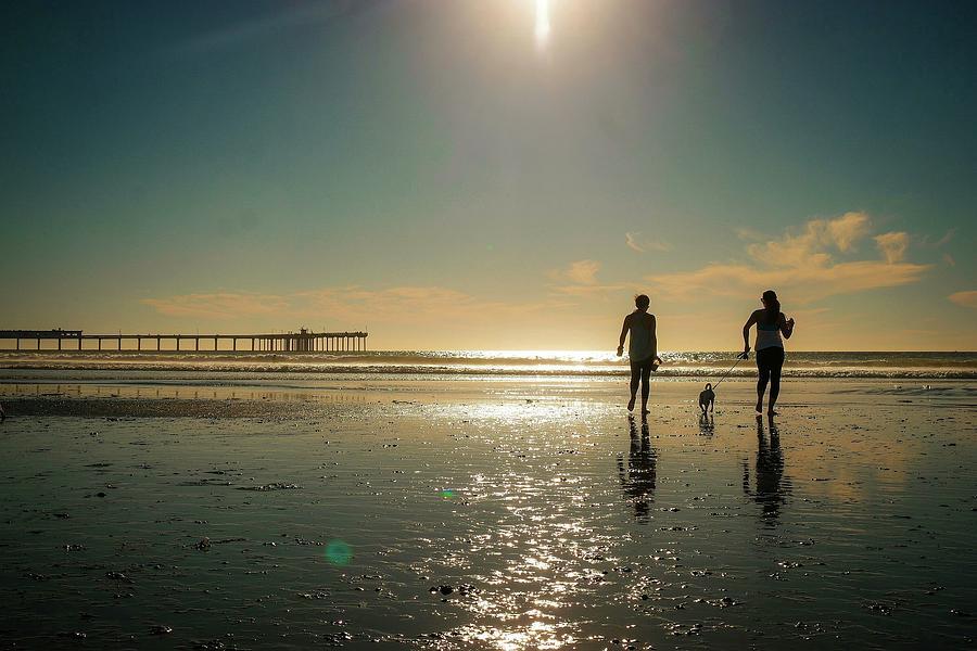 Dog Beach by Jeffrey Ommen