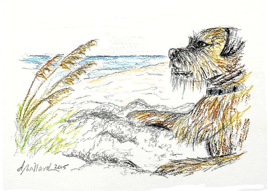 Dog Drawing - Dog By The Sea by Deborah Willard
