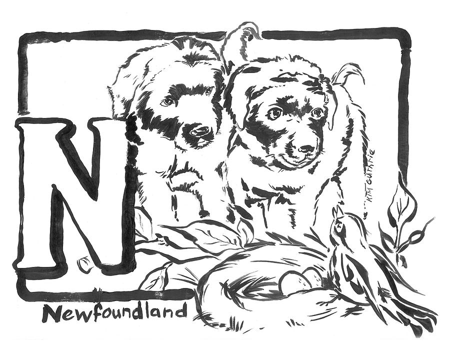 Dog Drawing Newfoundland Black And White And Letter N Painting By