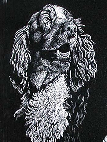 Dog Etching Drawing by Ric Larson