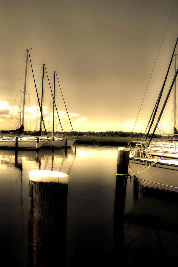 Mobile Al Photograph - Dog River Marina by Gulf Island Photography and Images