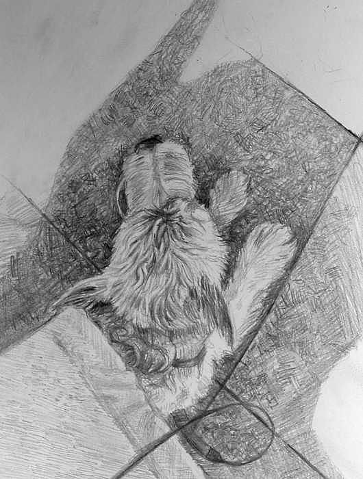 Dog Under Bench Drawing by William Hay