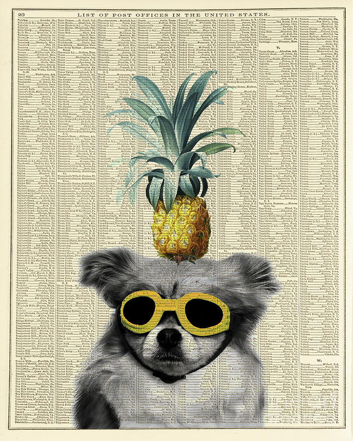 Dog Photograph - Dog With Goggles And Pineapple by Delphimages Photo Creations