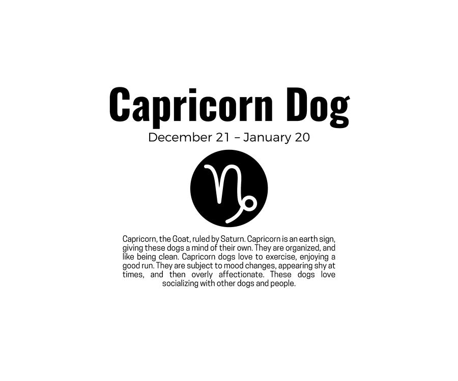 zodiac signs capricorn horoscope