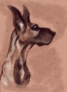 Dog Digital Art - Doggy by Zee Risek