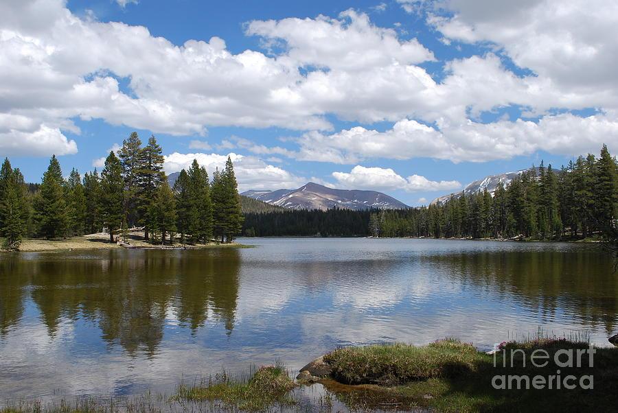 Yosemite Photograph - Doglake-yosemite by Nancy Aldrich