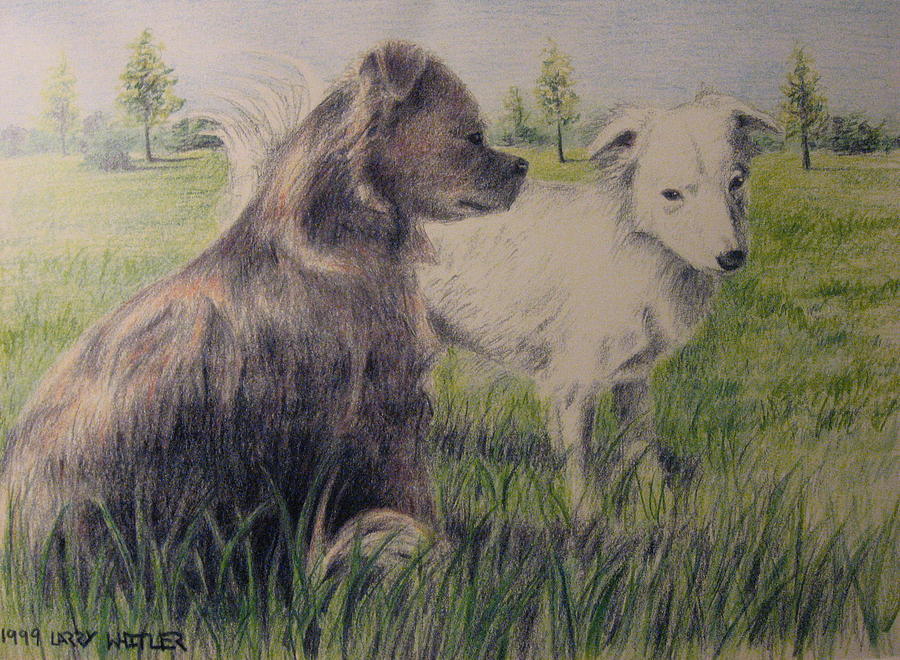 Dogs Drawing - Dogs In A Field by Larry Whitler