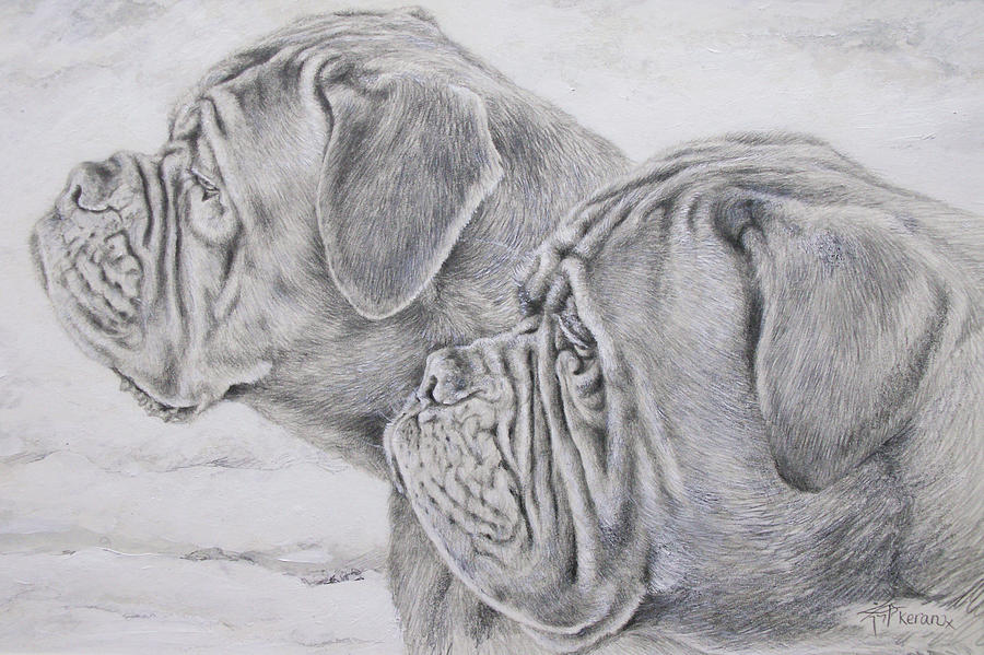 Dogs Painting - Dogue De Bordeaux by Keran Sunaski Gilmore