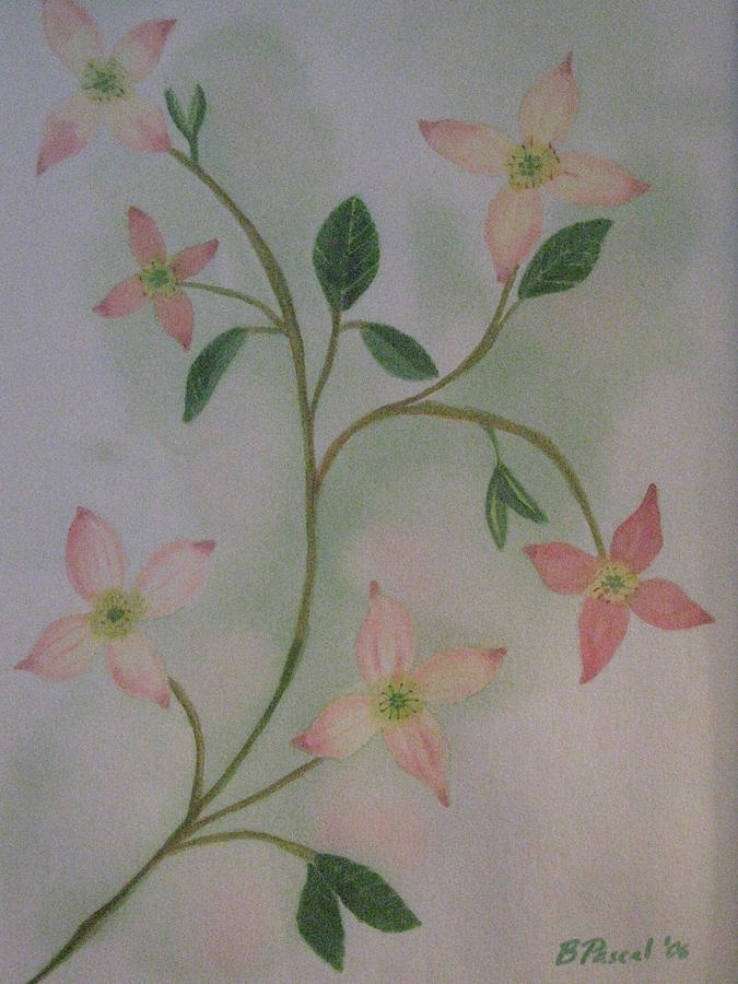 Flower Painting - Dogwood Spring by Barbara Pascal
