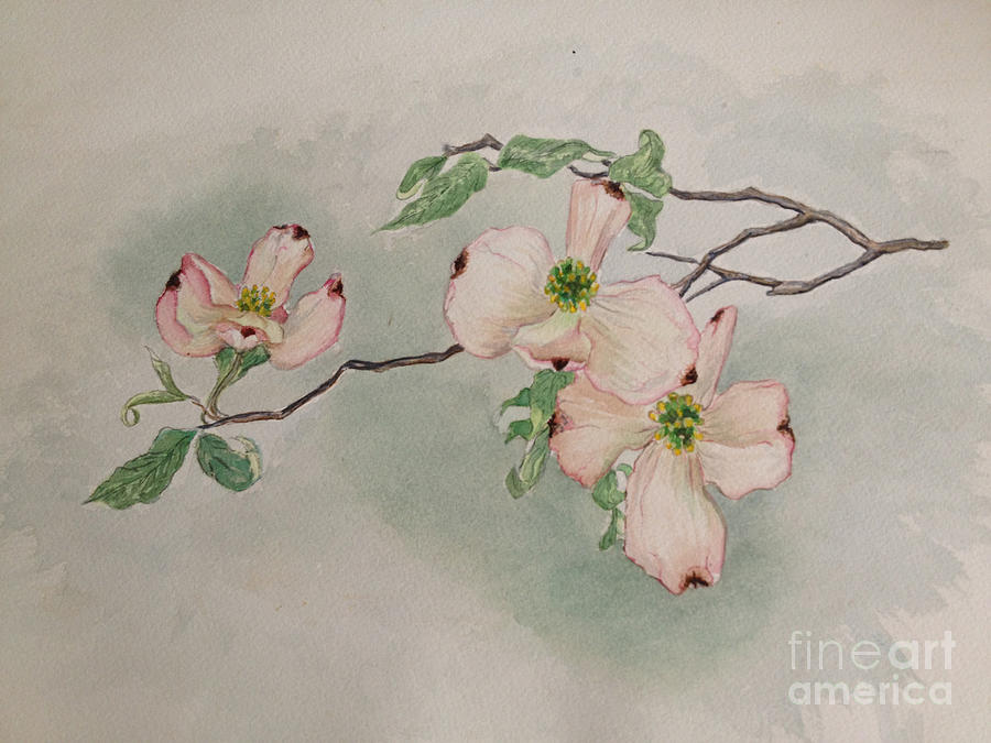 dogwoods painting by janet felts