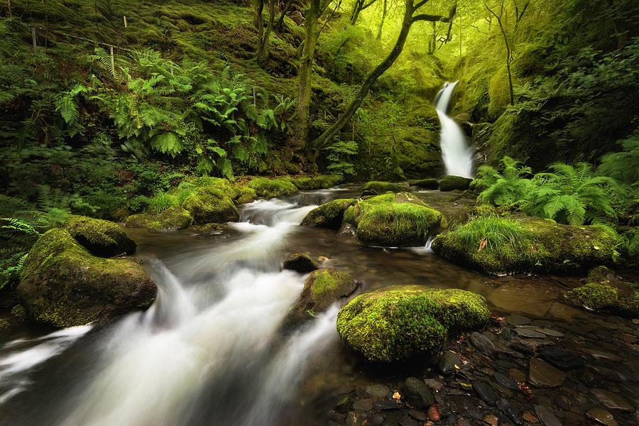 Landscape Photograph - Dolgoch Falls by Matt De Moraes
