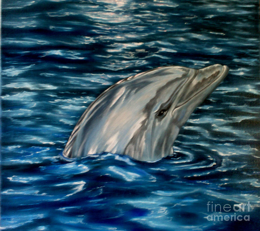 Oil Painting Painting - Dolphin Curiosity Oil Painting by Avril Brand