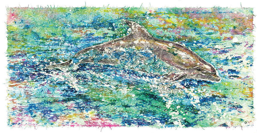 Porpoise Painting - Dolphin Frolic by Nick Cantrell