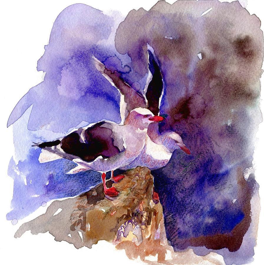Dolphin Gulls by Abby McBride