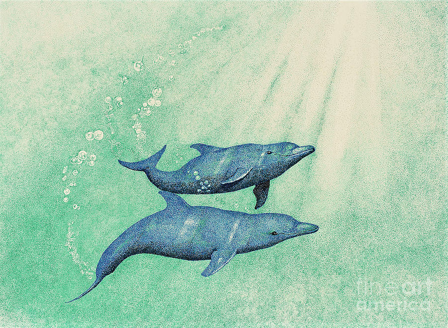 Dolphins Drawing - Dolphins by Wayne Hardee
