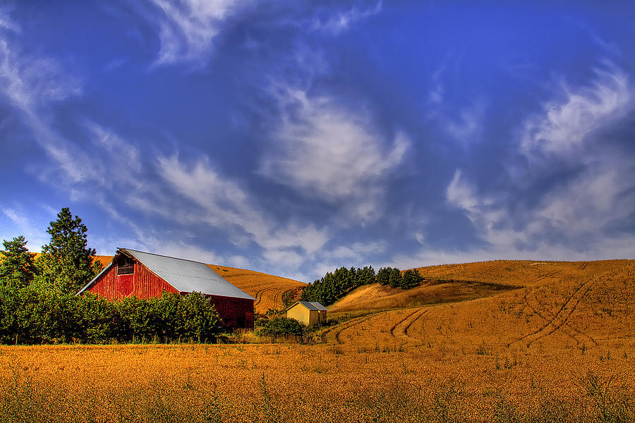 Landscape Photograph - Done With Harvest by David Patterson