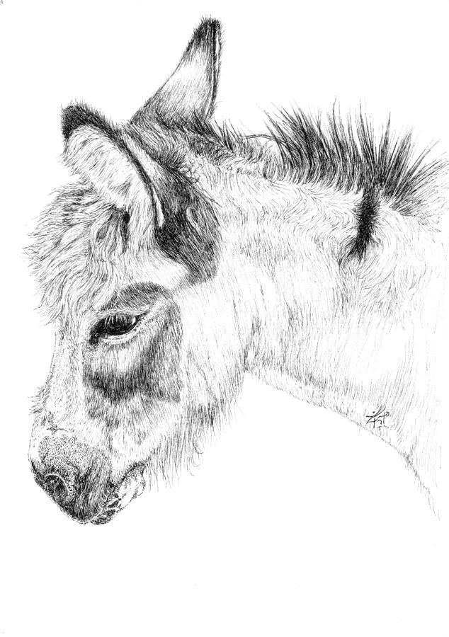 Donkey Painting - Donkey 2 by Keran Sunaski Gilmore