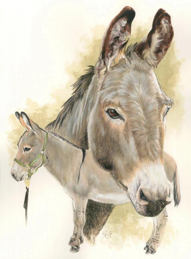 Donkey Mixed Media - Donkey by Barbara Keith