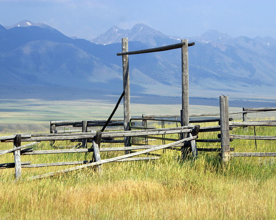 Mountains Photograph - Dont Fence Me In by Marty Koch