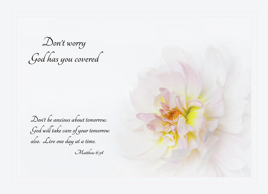Don't Worry with Verse by Mary Jo Allen