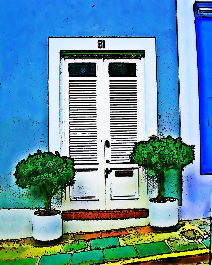 Door Photograph - Door 61 by Perry Webster
