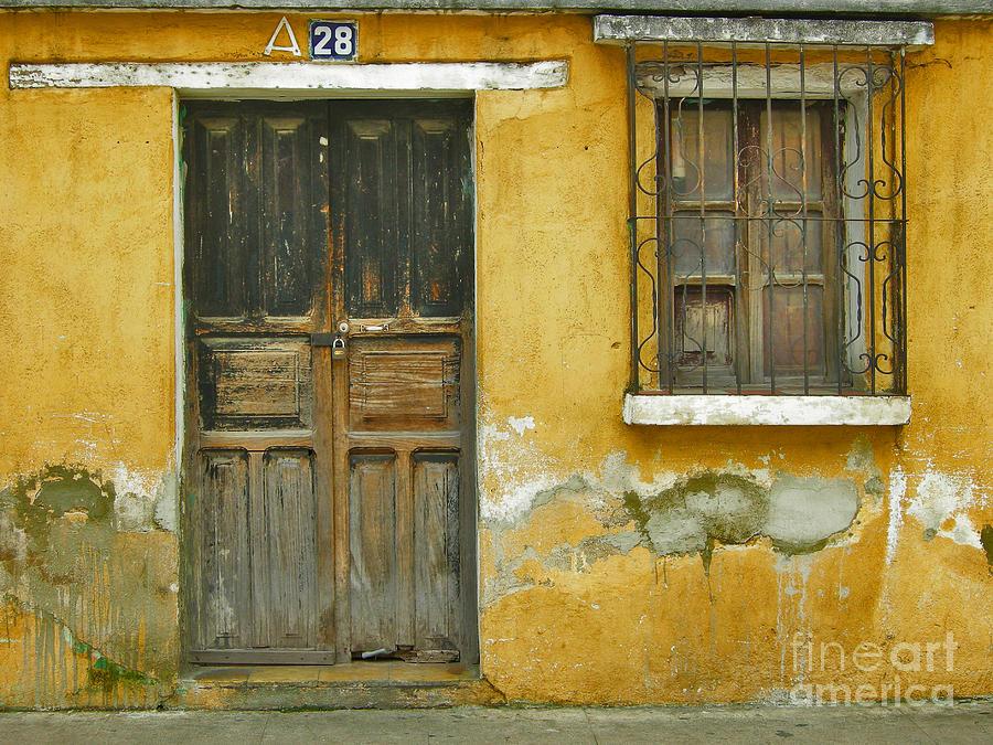 Door Photograph - Door And Window by Derek Selander